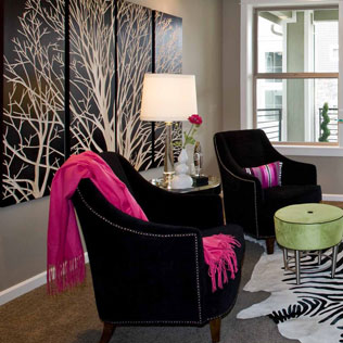 Image of contemporary black chairs with pink throws and zebra rug